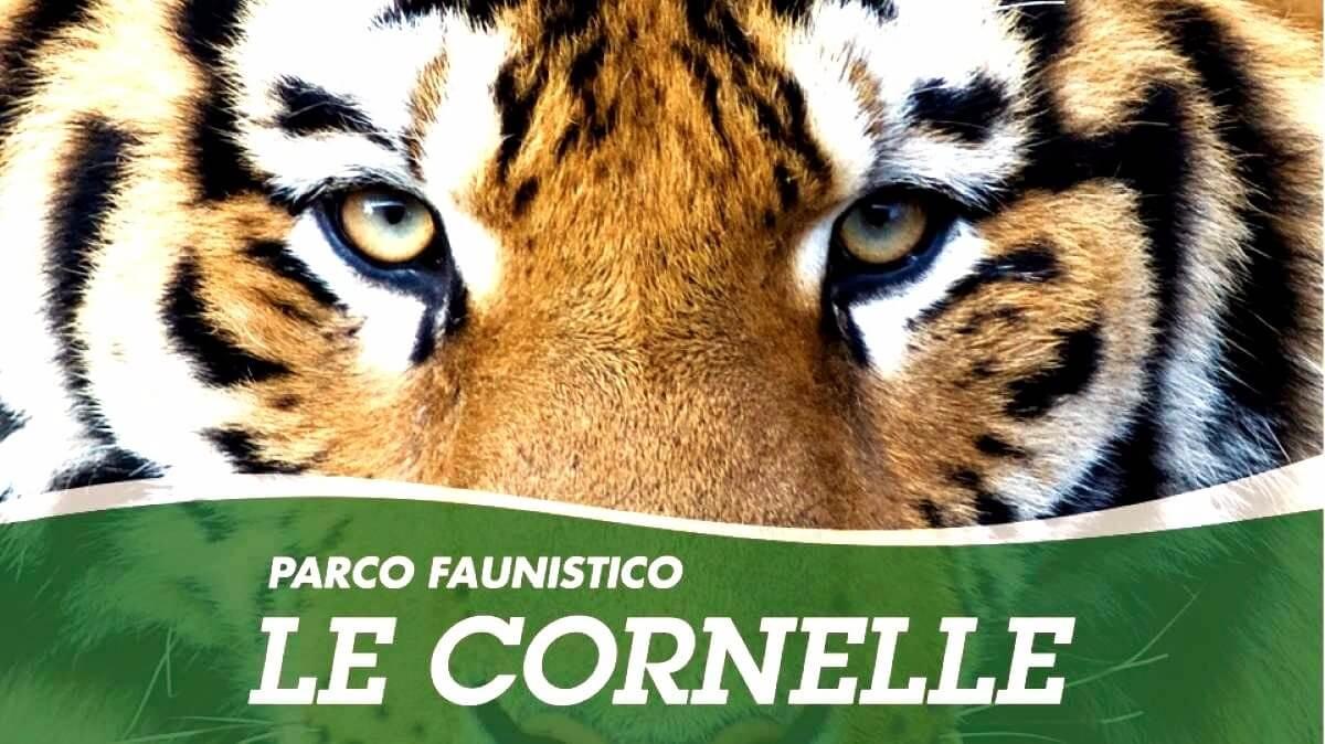 Le Cornelle Animal Park